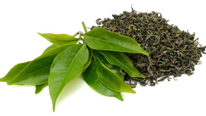 Czy zielona herbata odchudza?